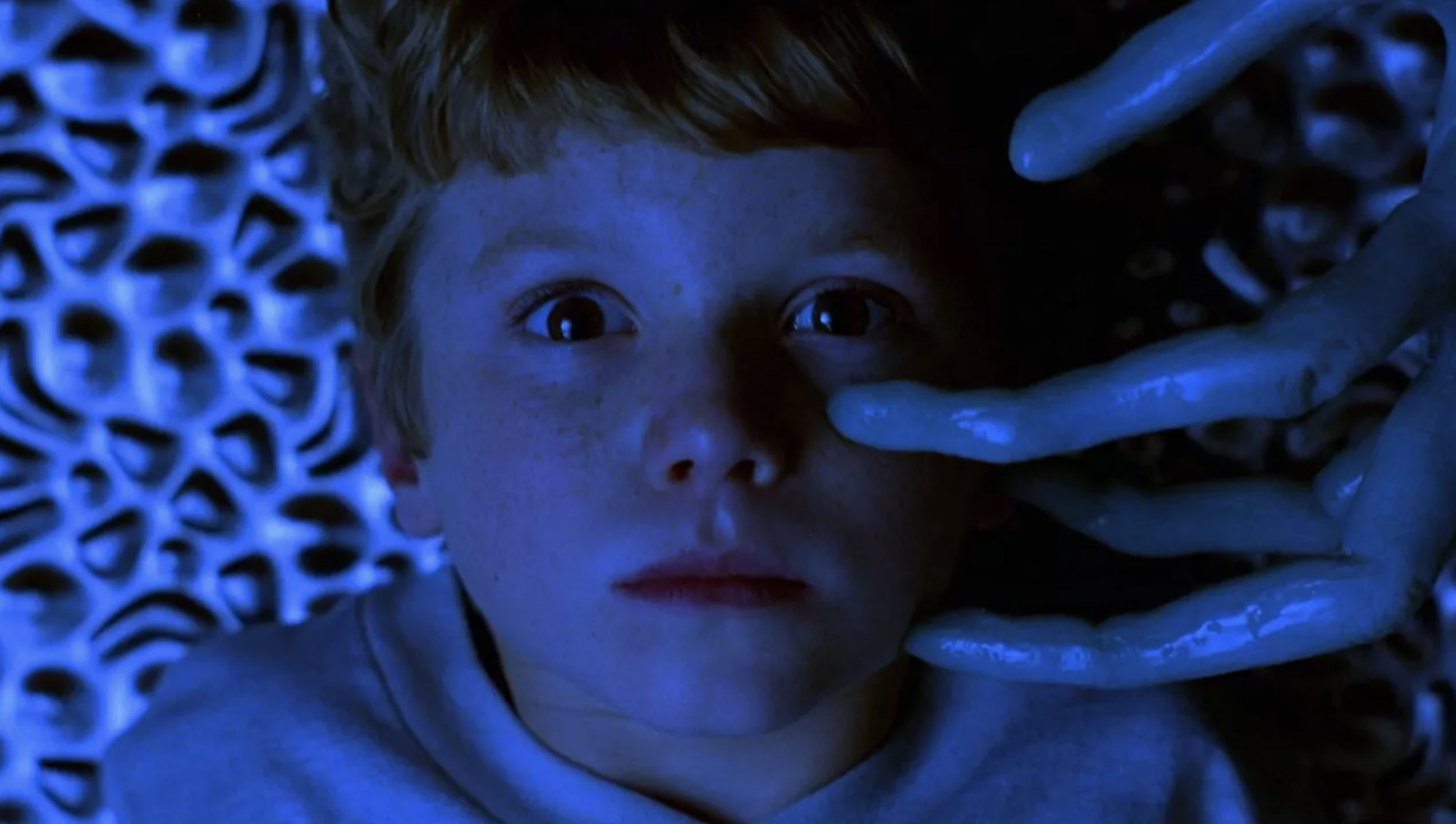 Mysterious Skin ( bande annonce VOST ).