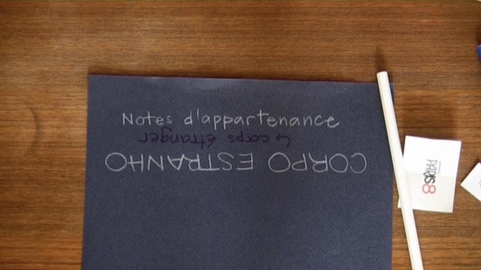 Corpo Estranho : notes d'appartenance - Flávia TAVARES - 2009