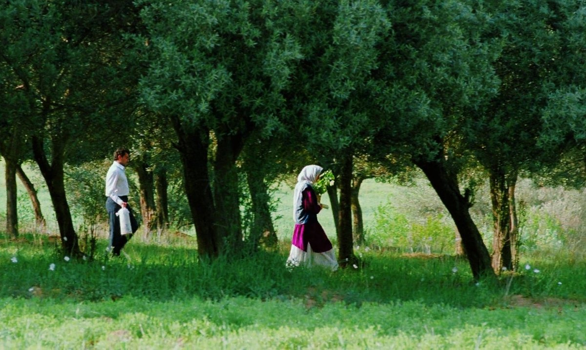 Hommage à Abbas Kiarostami #7, Au travers des oliviers, 1994
